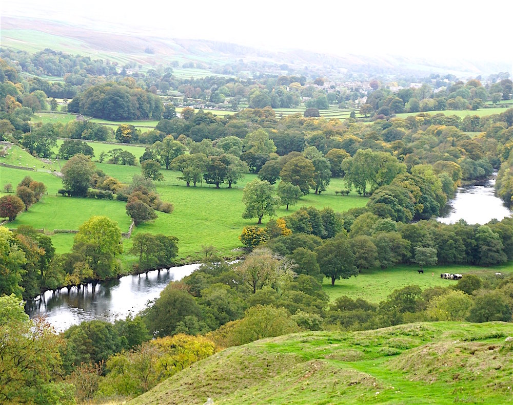 Tees River Valley, where Shorthorns Originated
