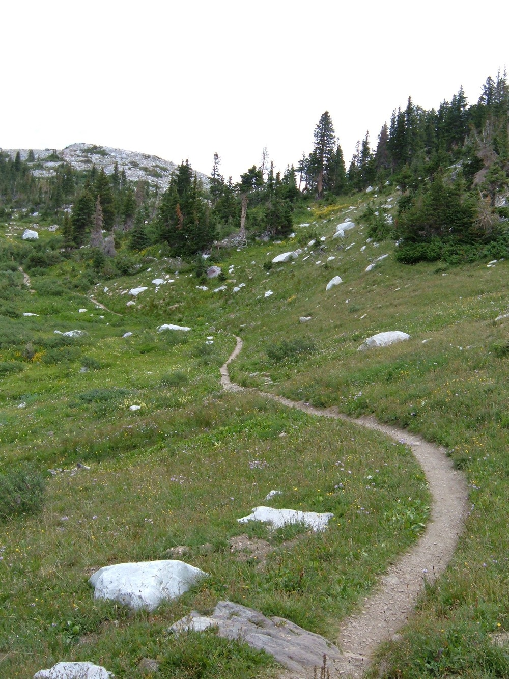 Trail in Wyoming's Snowy Range