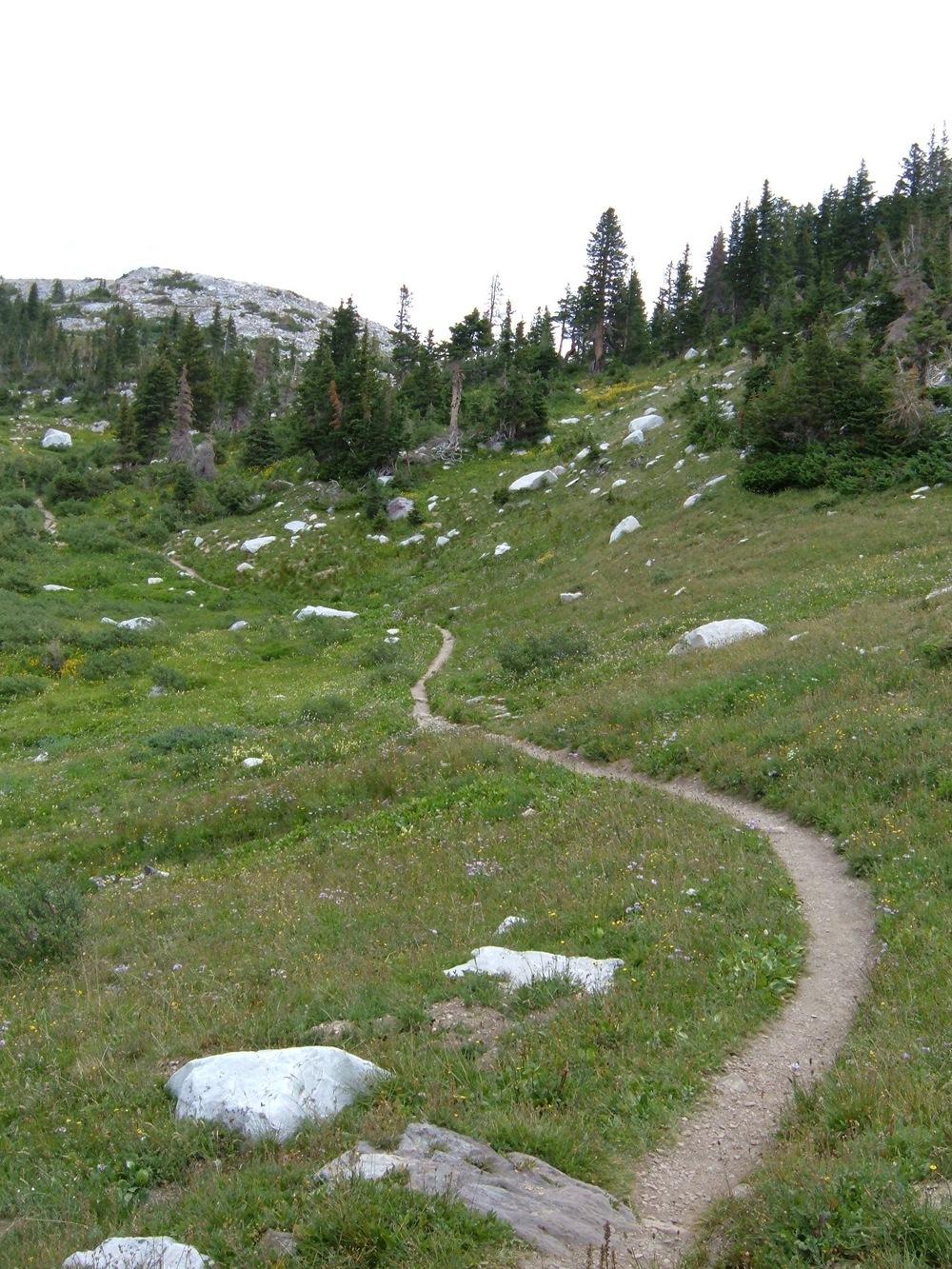 Trail in Wyoming's Snowy Range