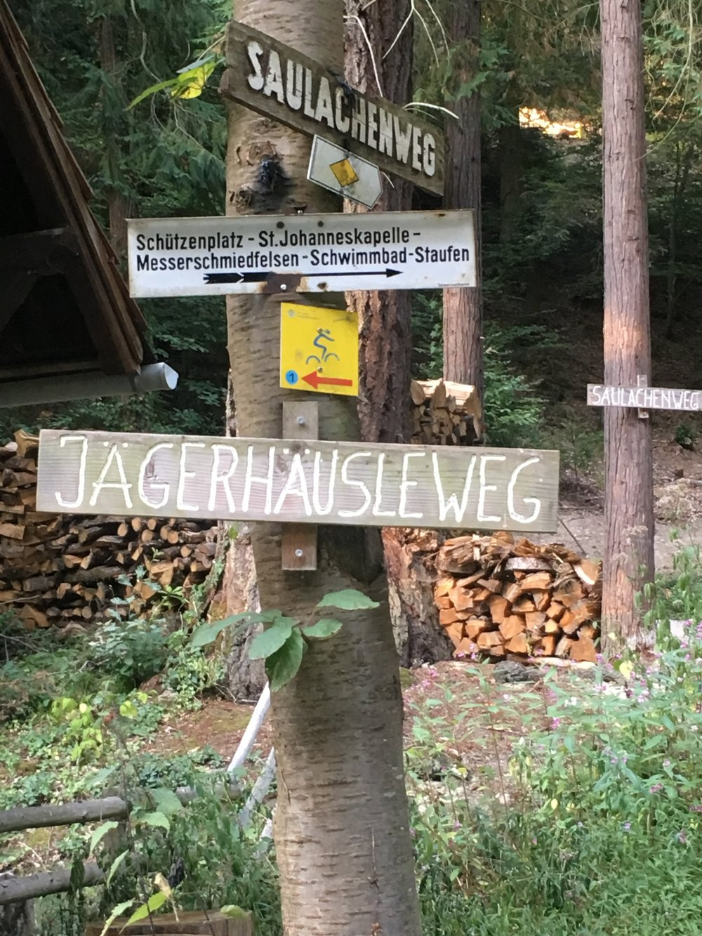A sign in the Black Forest, Germany. The good news is, there's always more than one way to go.