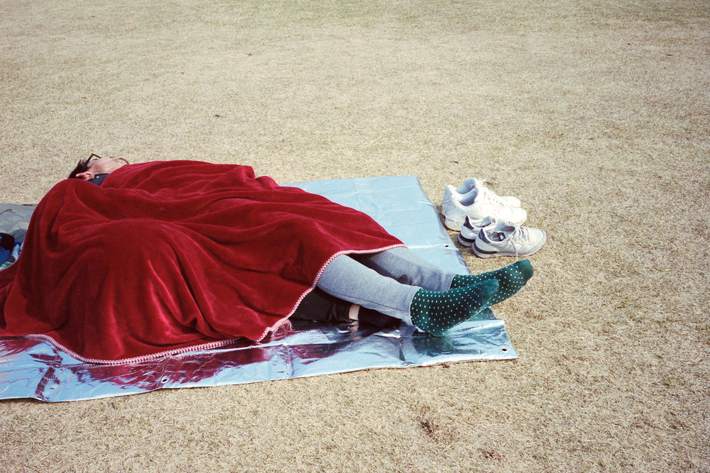 picnic1 (1).jpg