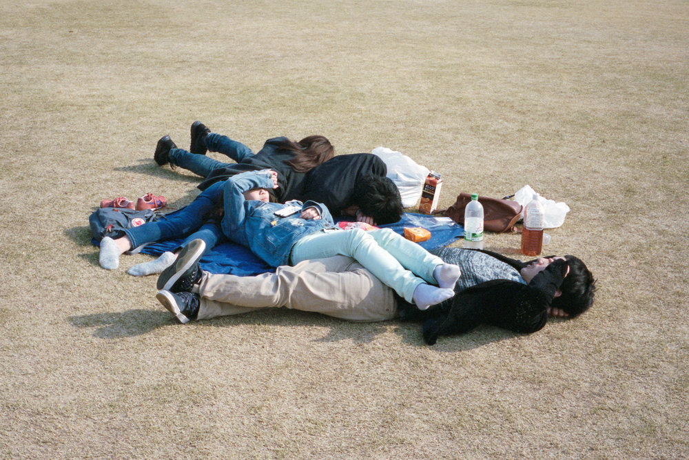 picnic1 (3).jpg