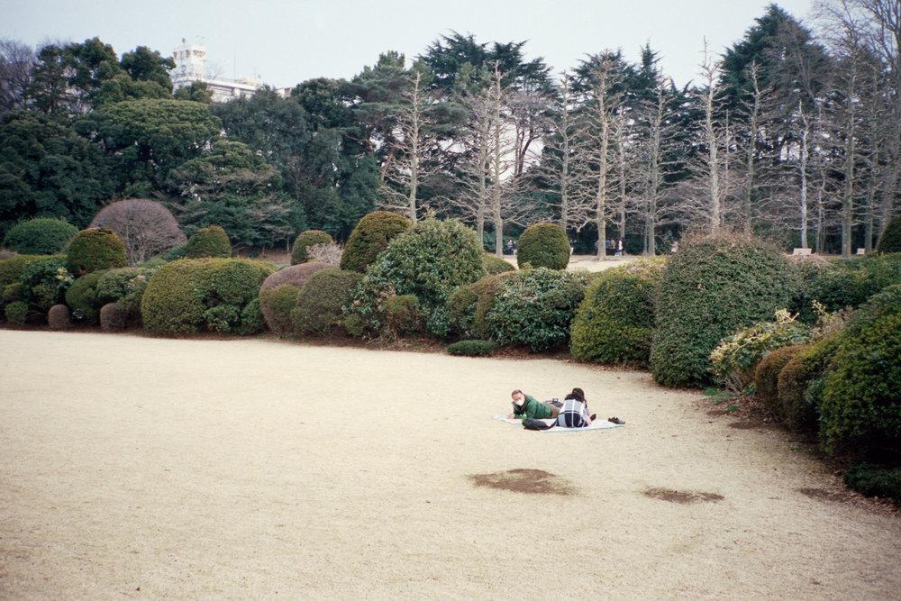 picnic1 (11).jpg