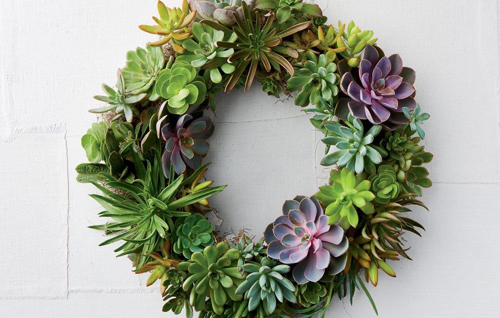 SucculentWreathClass