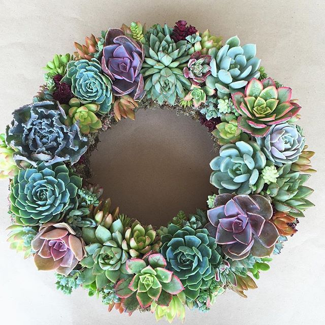 Succulent Wreath.jpg