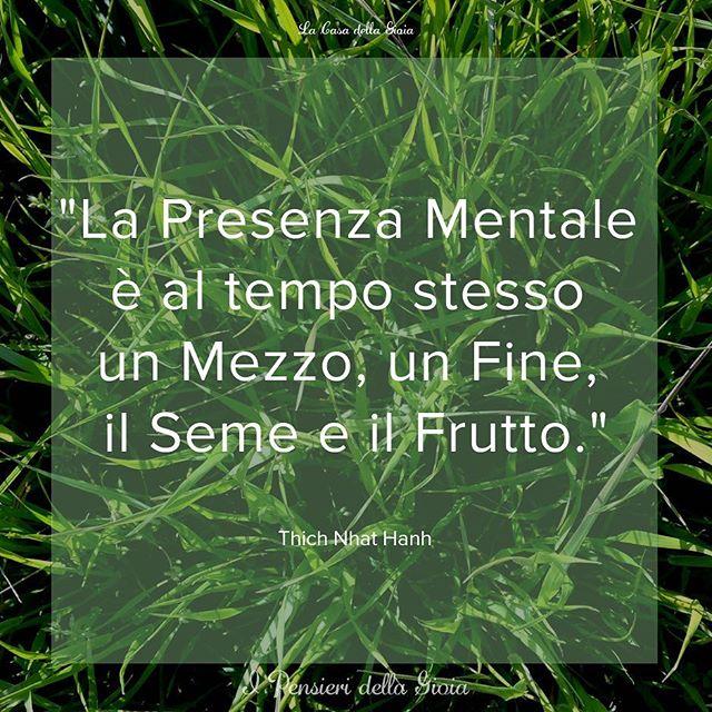 """""""La Presenza Mentale e' al tempo stesso un Mezzo, un Fine, il Seme e il Frutto."""" Thich Nhat Hanh  #IPensieridellaGioia #LaCasadellaGioia #PresenzaMentale  #MeditazioneMindfulness #Mindfulness #Maditazione #Meditazione #QuieOra #ThichNhatHanh"""