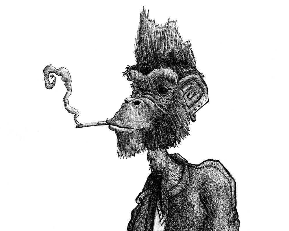 SmokingMonkeyport.jpg