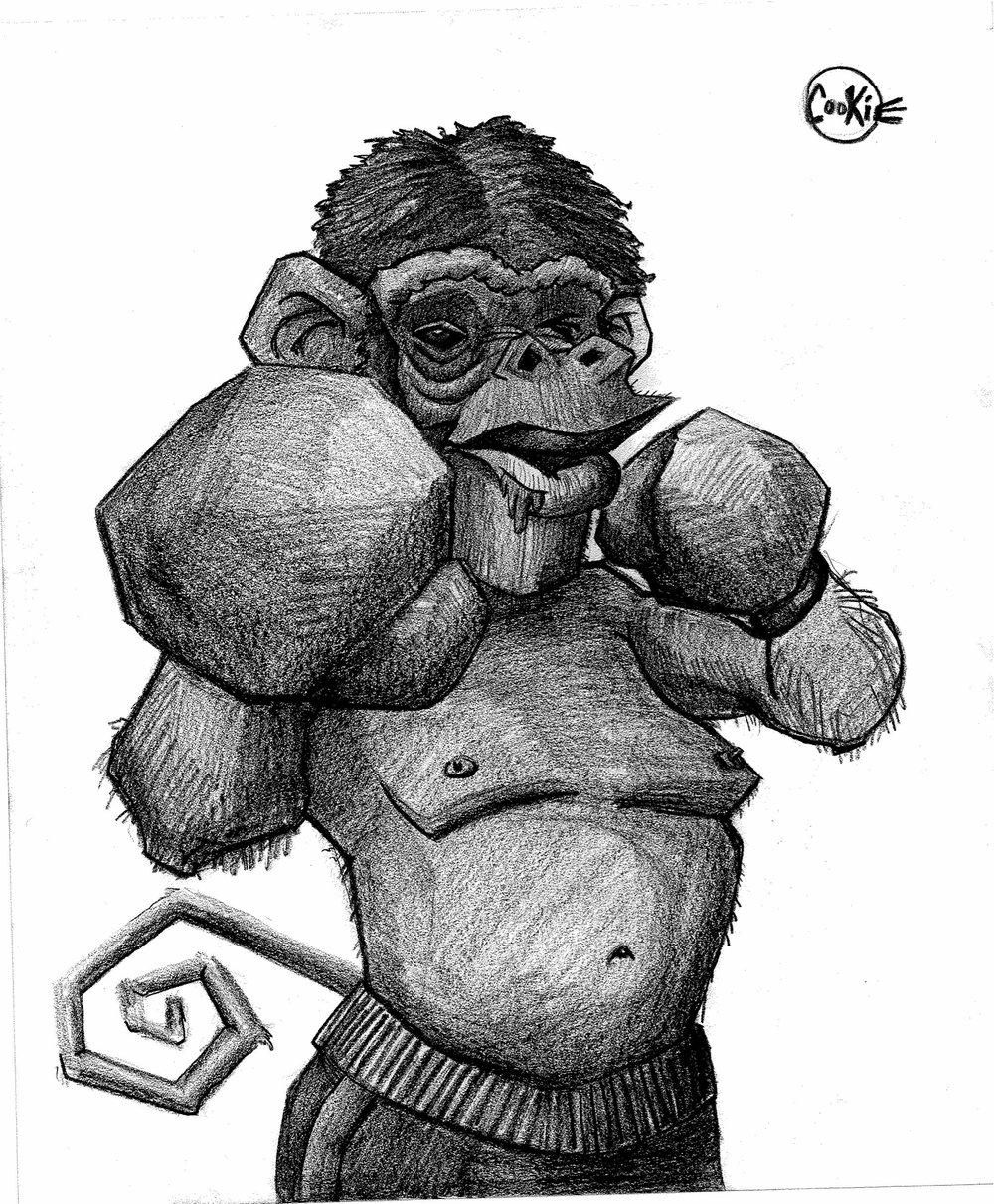 Rocky Monkey.jpg