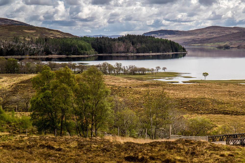 Loch Naver from just south of Altnaharra.