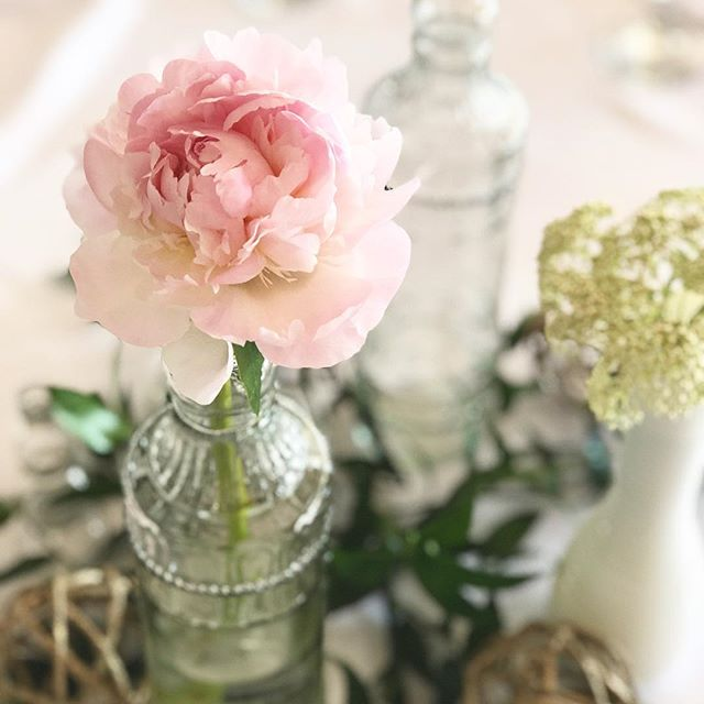 i adore super sweet, simple reception decor. just one gorgeous fresh bloom goes a long long way. 🌸 @olivebranch_events