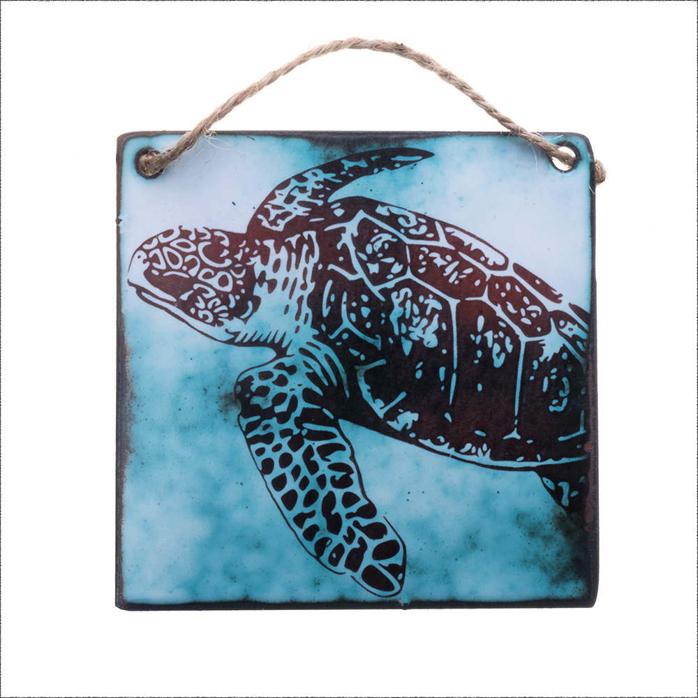 Sea Turtle Our images come from a combination of our drawings, photographs, and vintage images.