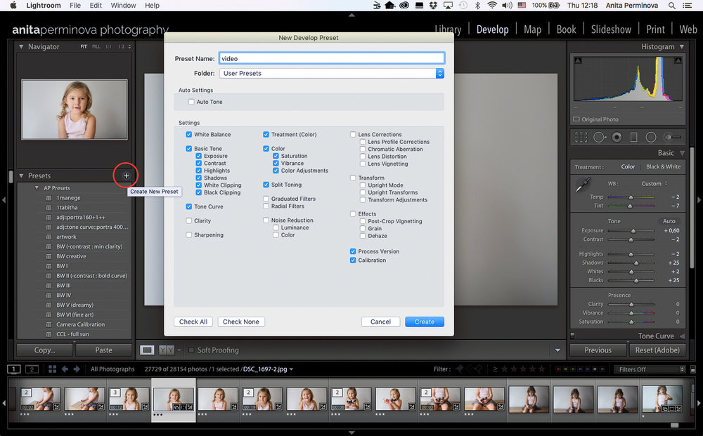 color grade your videos in LR by Anita Perminova Amsterdam Photogrpaher step 3 create a preset