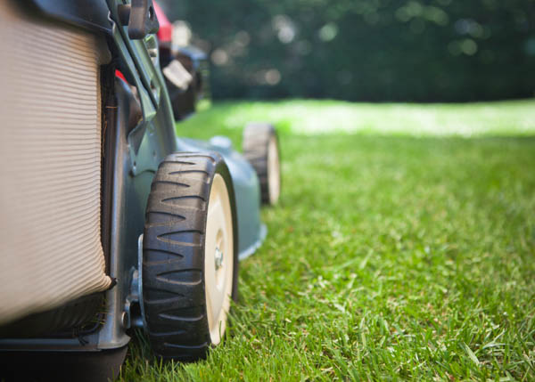 best-office-lawn-care-oklahoma.jpg