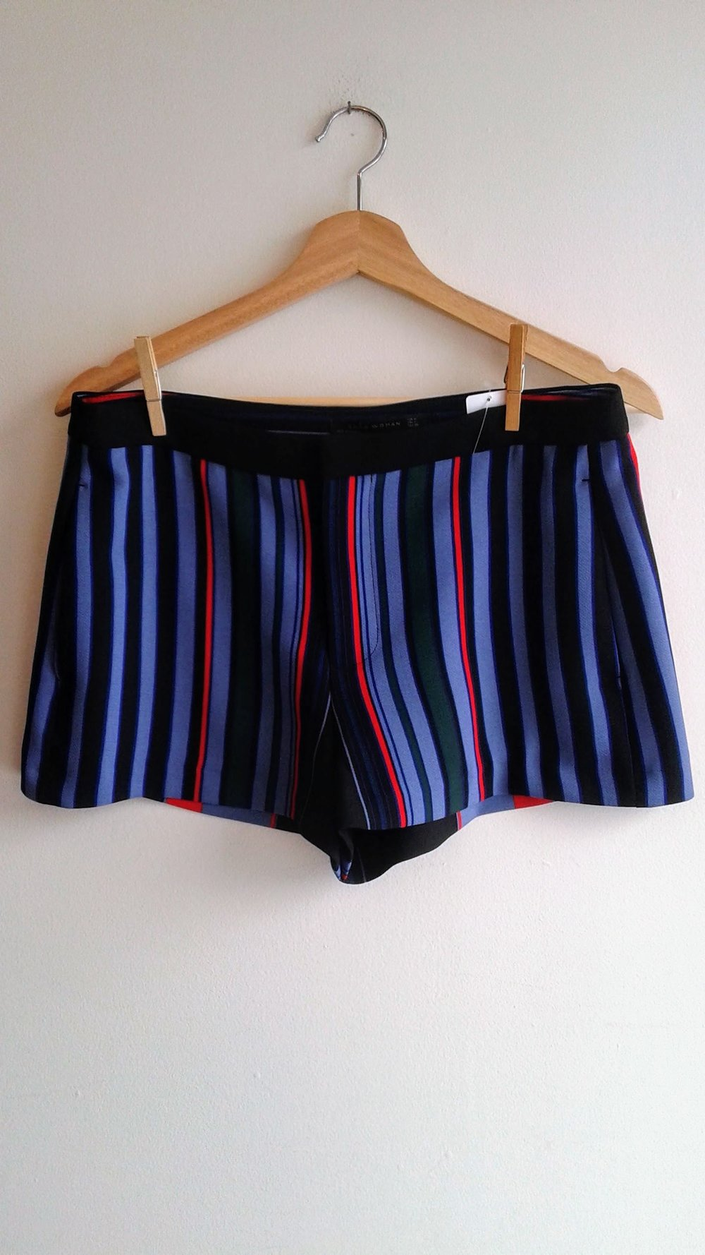 Zara shorts (NWT); Size M, $14