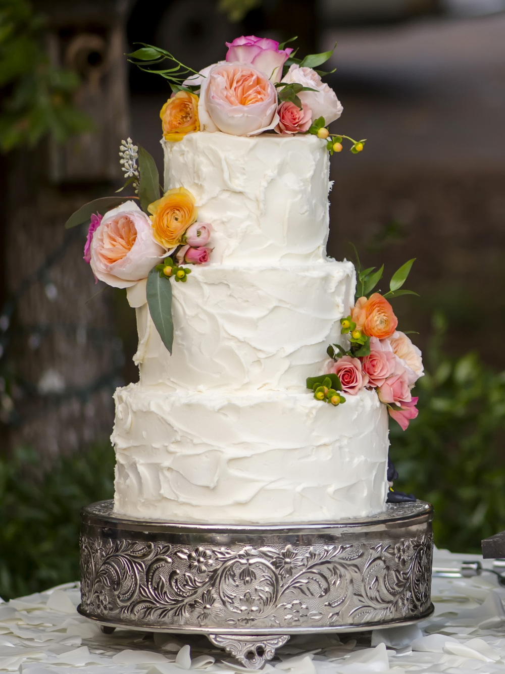 Cake from front - this was a wide shot from 1747.JPG