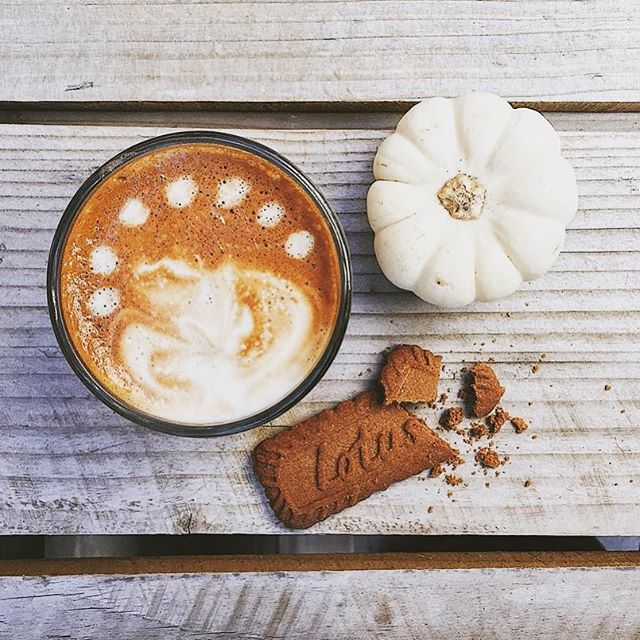 We love this photo by @davidtcoons! Come enjoy the beautiful day and a cappuccino on our back patio! . . . . . #overtdenver #coffee #cappuccino #espresso #patiovibes #weather #organic #organicdenver #5280, #5280eats #denvereats #patio #fall #biscotti #pumpkin #gourd