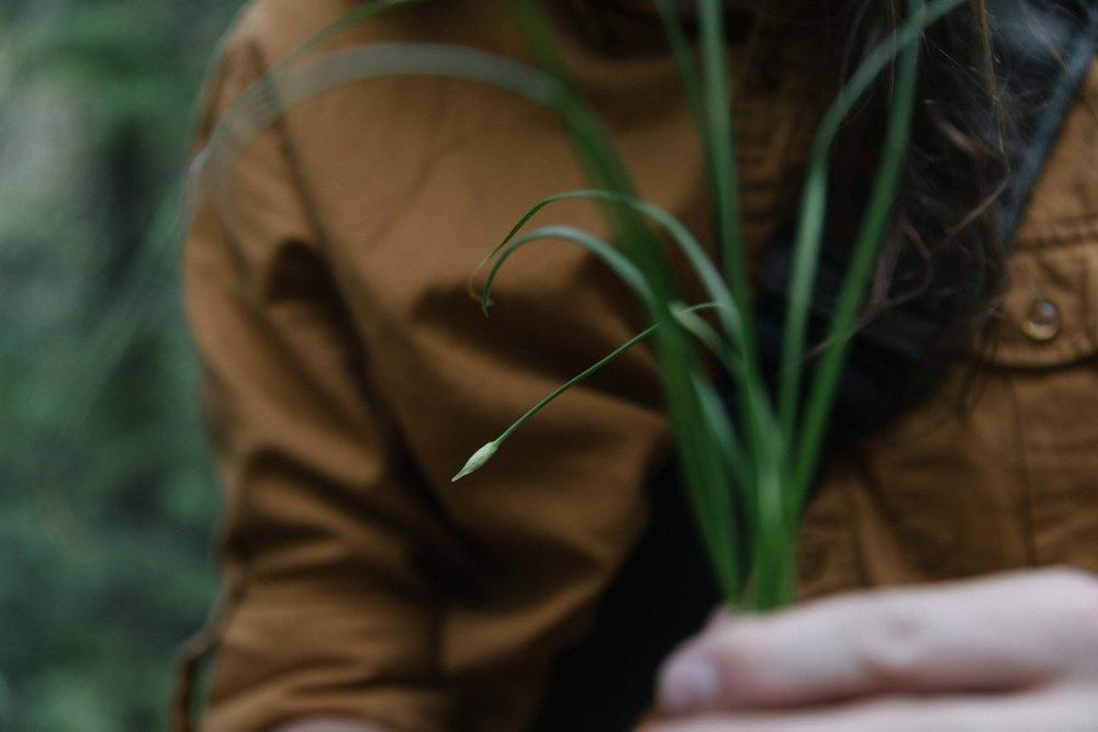 Jimena-Peck-Denver-Lifestyle-Editorial-Photographer-Daniel-Gray's-Sourdough-Bread-Plant-Leaves