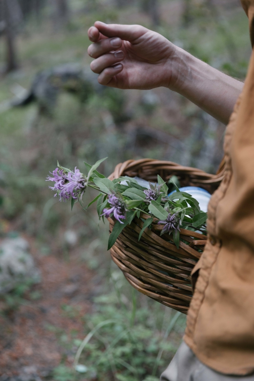 Jimena-Peck-Denver-Lifestyle-Editorial-Photographer-Daniel-Gray's-Sourdough-Bread-Flowers-Basket