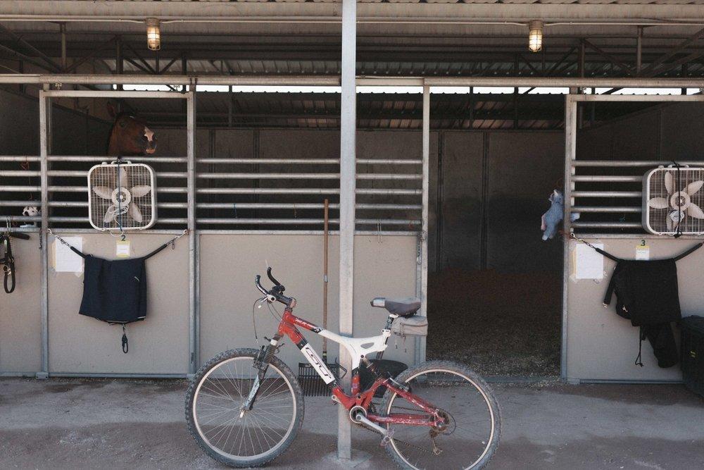 Jimena-Peck-Denver-Lifestyle-Editorial-Photographer-Colorado-Horse-Park-Mandy-Porter-For-Mastermind-Bike