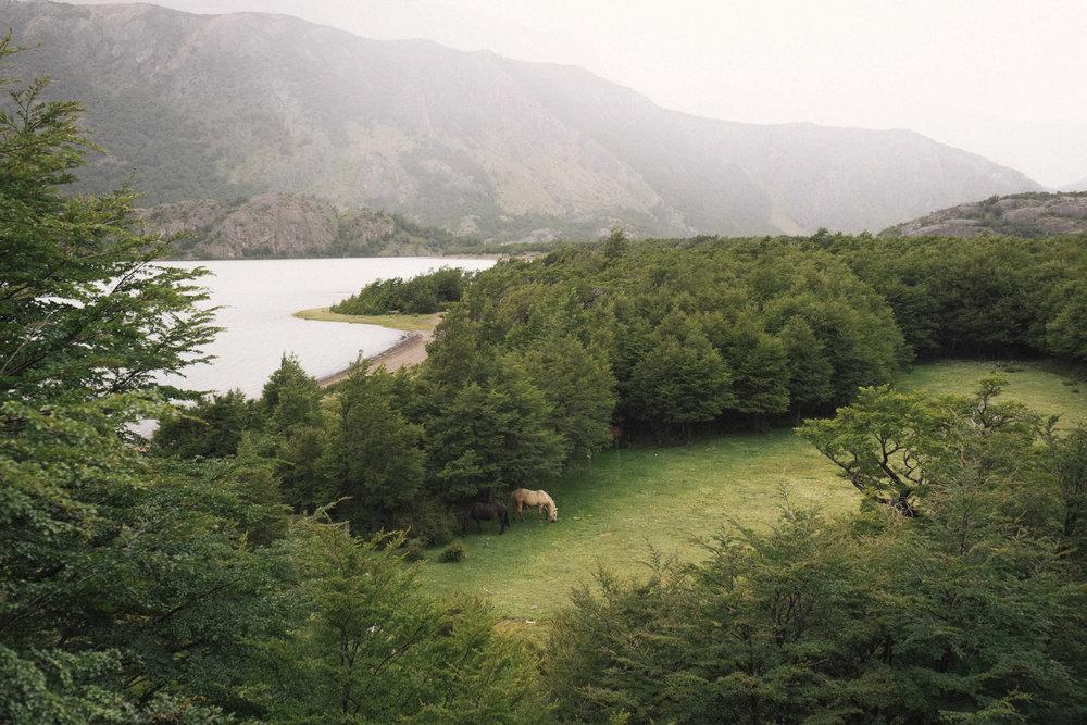 Jimena Peck Denver Lifestyle Editorial Photographer Lake Nature