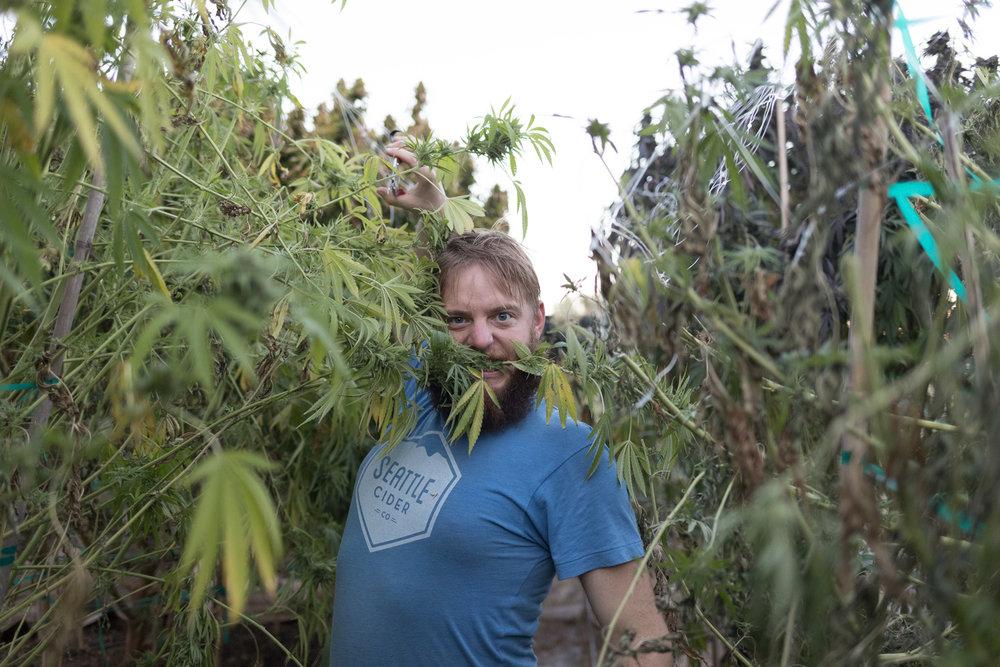 Jimena-Peck-Denver-Editorial-Commercial-Lifestye-Photographer-Farms--36.jpg
