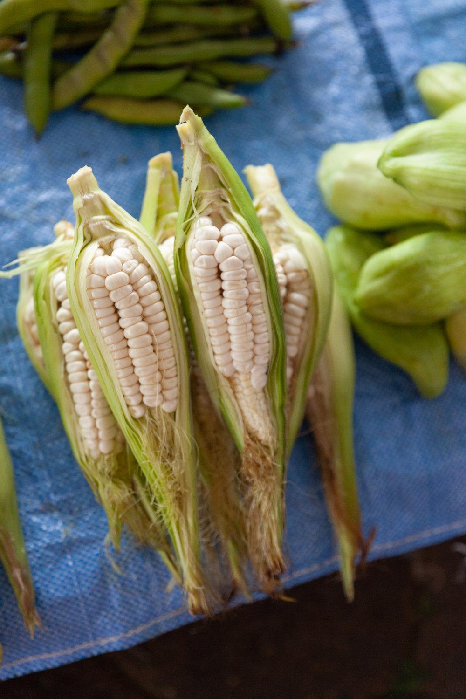 Jimena Peck Denver Lifestyle Food Photographer Corn