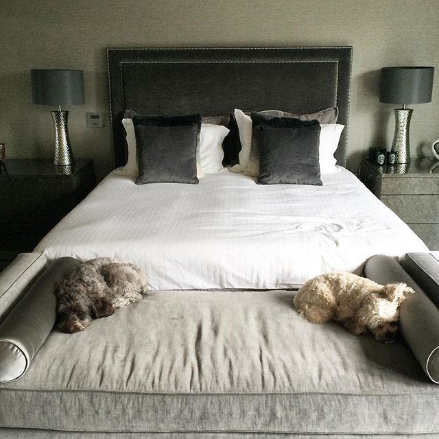 Quick iPhone pic of the room (a couple of months after installation). This wasn't quite what we had in mind for the end of bed bench! 🐾🐾🐾 They at least match the scheme.... 😍 Cushions & throw to follow. #hushdesignuk #instapiration #bedroom #bench #dogs #headboard #sidechests #bedsidetable #lamps #wallpaper