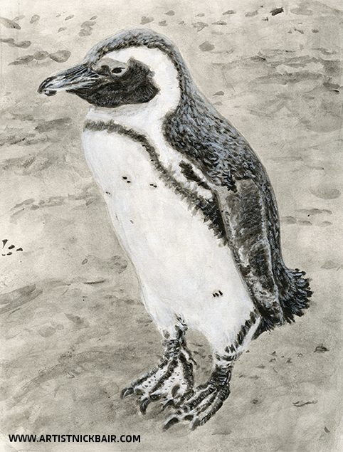 South African Penguin - SOLD