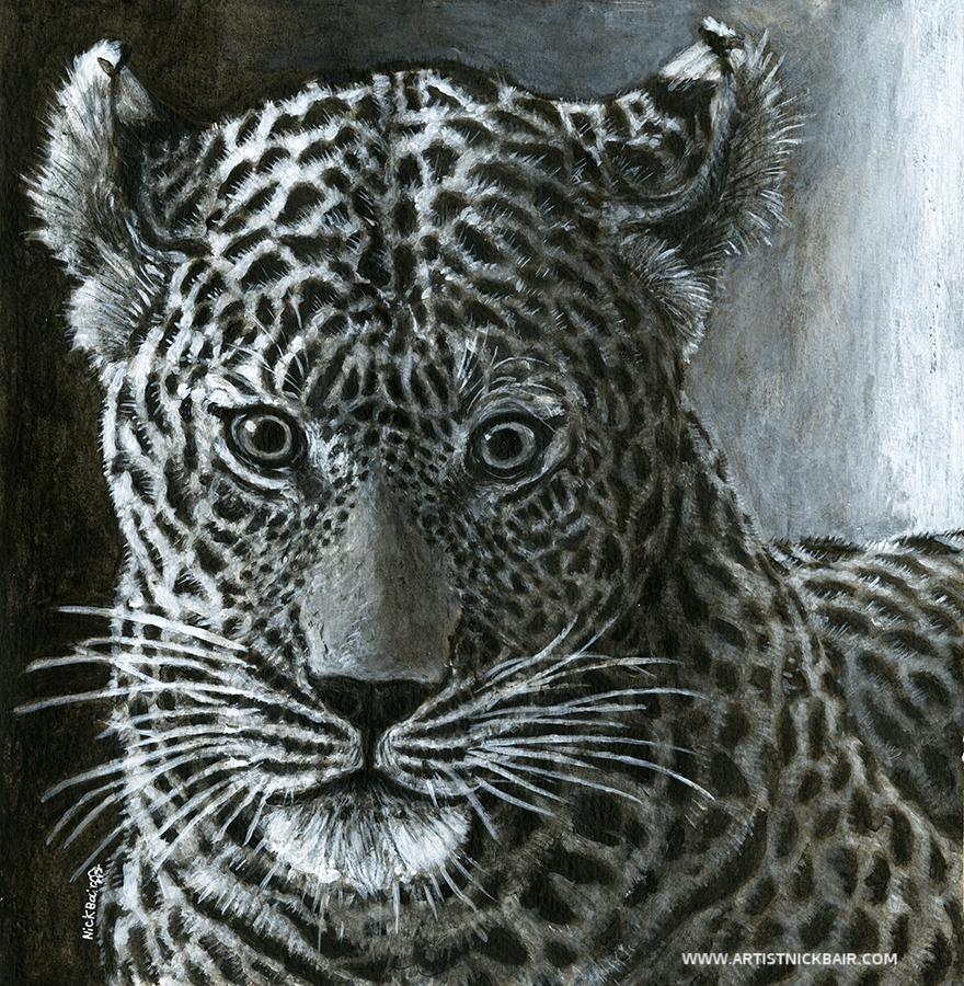 Leopard Stare Down - SOLD