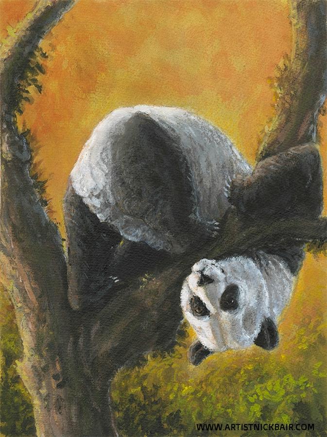 Panda Down