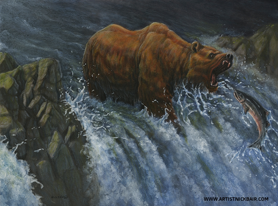 Bear and Salmon Run