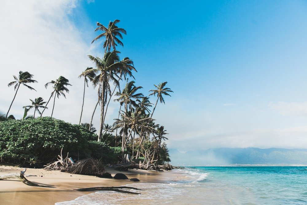 Maui Escape -