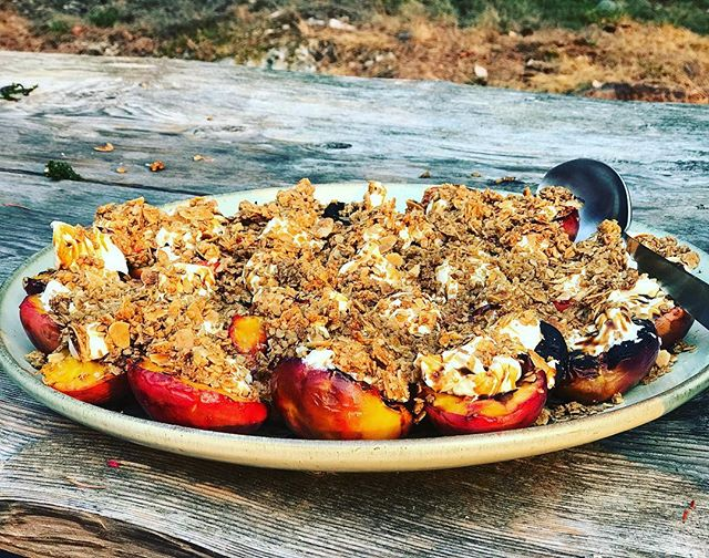 This was a first time experiment that turned into a major hit. Grilled some farmers market nectarines. Made some homemade vanilla lemon mascarpone (gonna try a vegan version next time). Drizzled with pomegranate molasses. And topped with a deconstructed crisp topping (basically the top of a fruit crisp but made separately like granola)