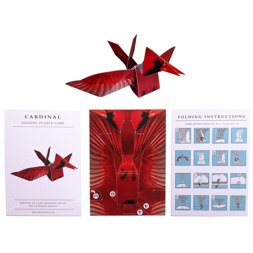 cardinal_full copy copy.JPG