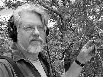UC Santa Cruz music professor David Dunn listening to bark beetles. Credit: Courtesy of David Dunn