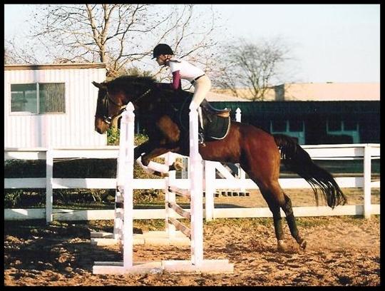 jumpingCHAMP2.jpg