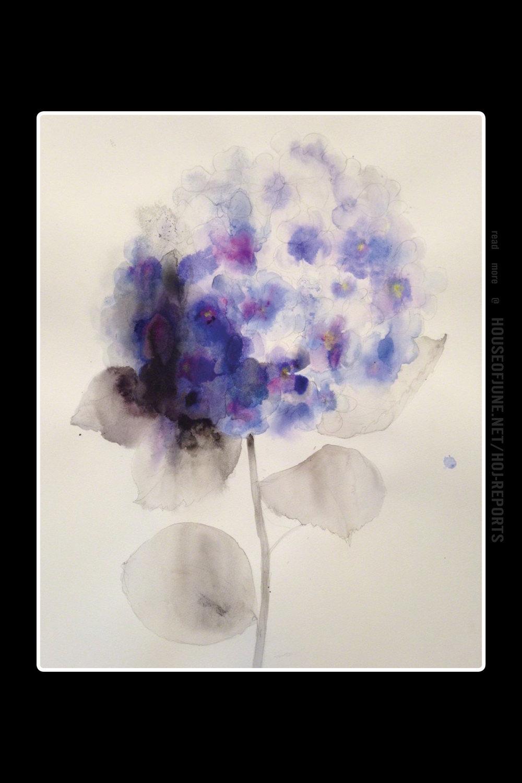 Lourdes Sanchez   (Watercolor)  Violet Hydrangea, 2016