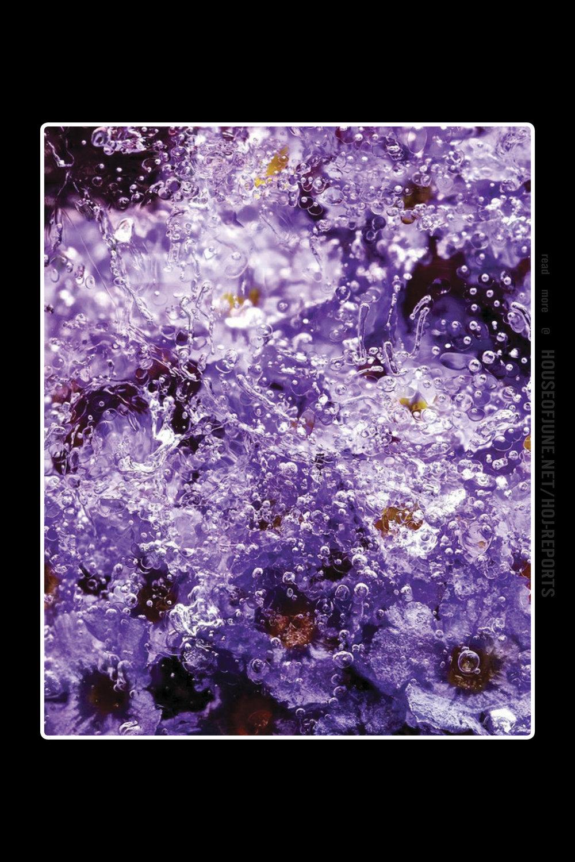 Vlad Korol   (Hd Inject)  Repulsive Cryo-purple, 2016
