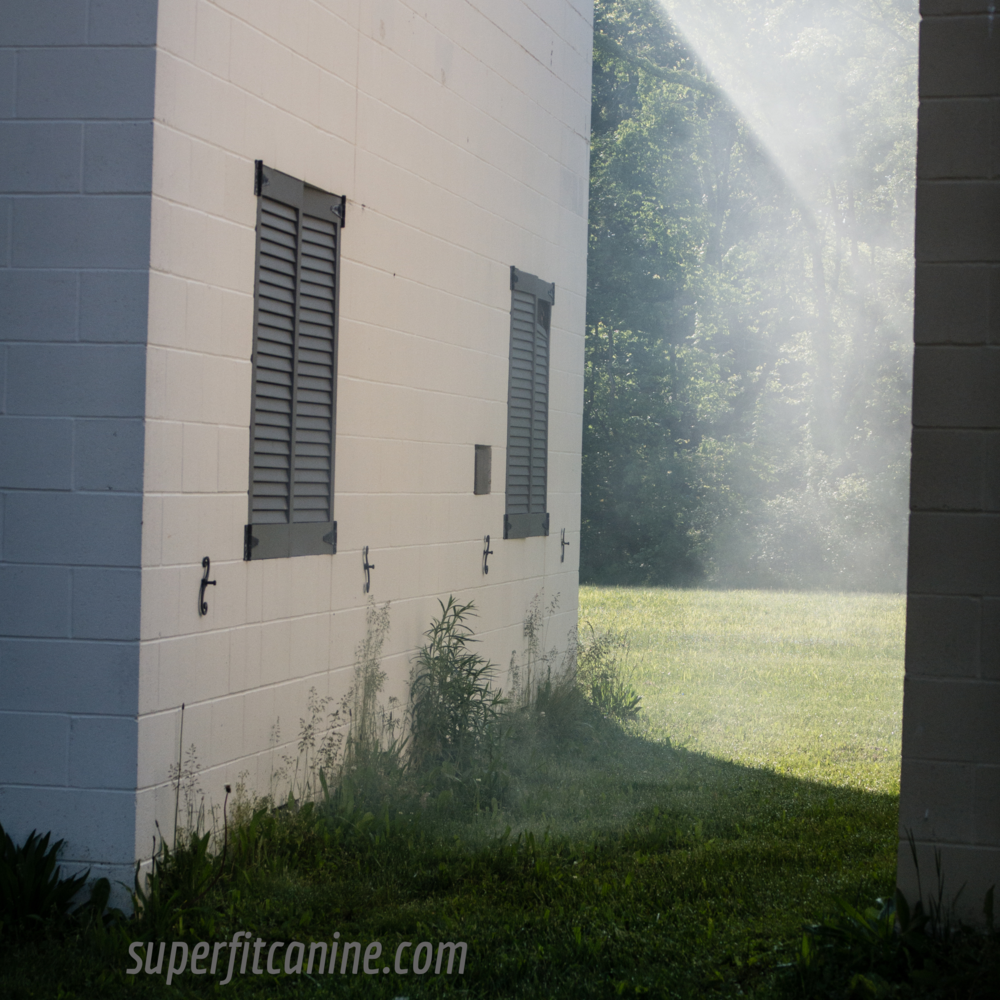 Buildings were filled with smoke after a scenario to demonstrate how odor may have been moving through the area. Here, smoke is exiting through holes at the base of one of the buildings. A great learning experience and a reminder to trust your dog!