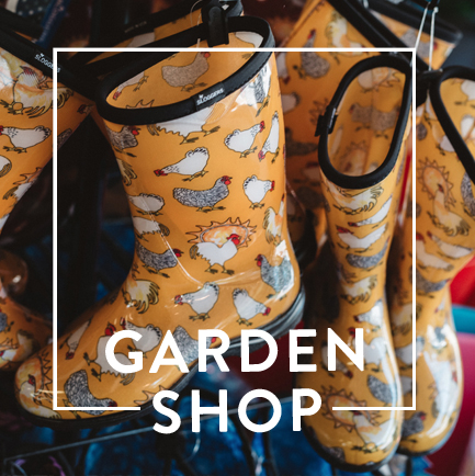 website-dept-cards-gardenshop.jpg