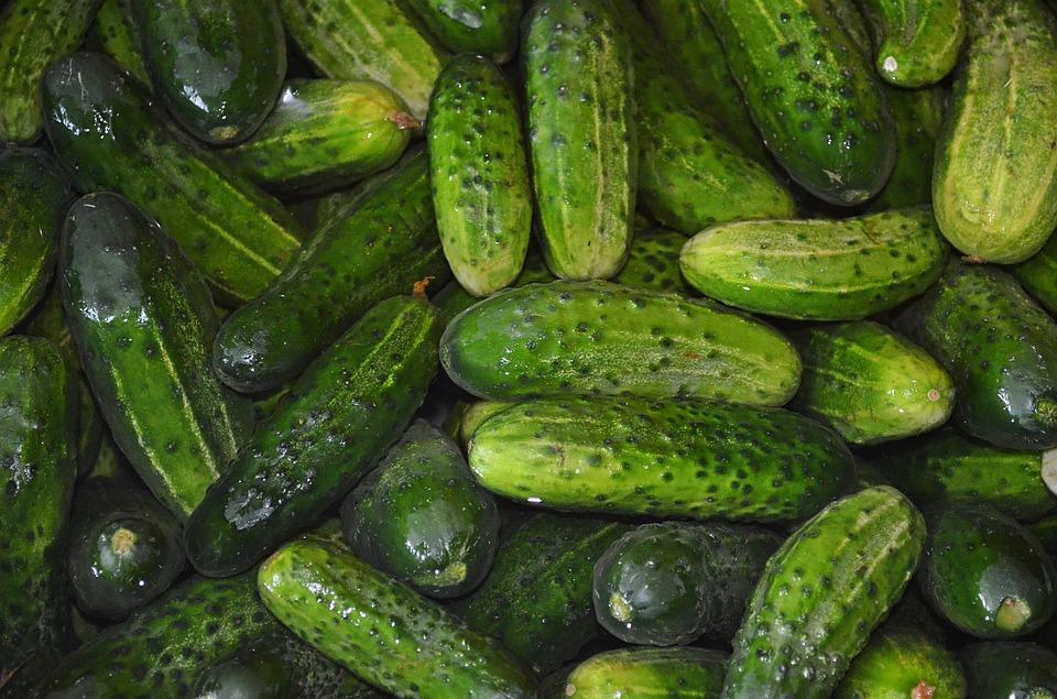 cucumbers-863808_960_720.jpg