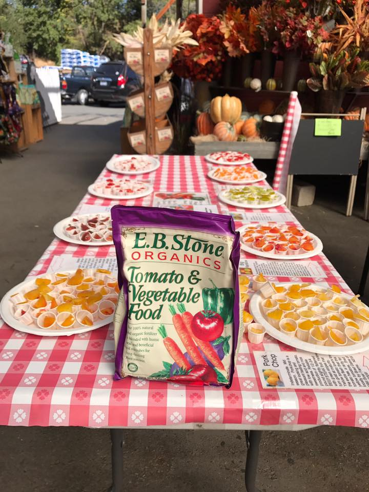 Tomato Tasting with Tom Jones of E.B. Stone