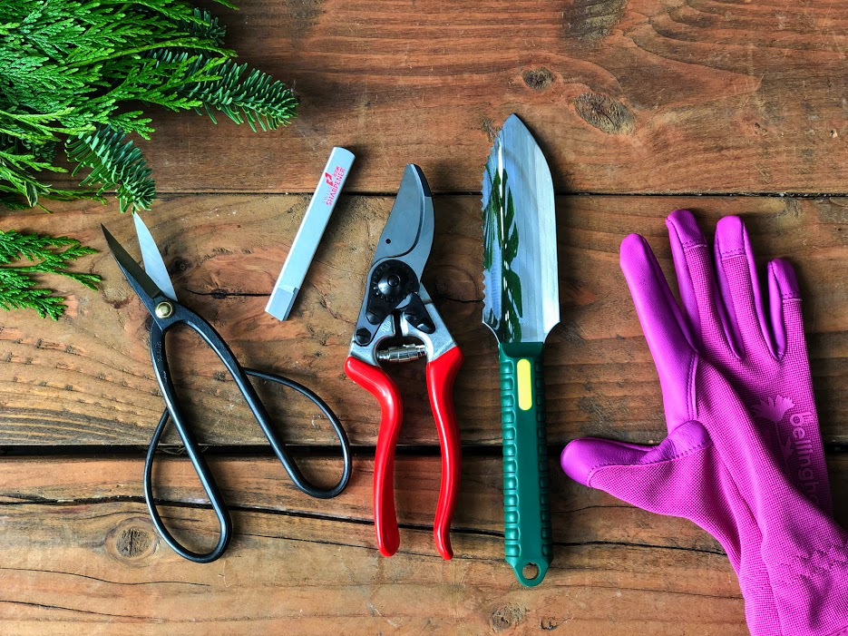 Our pruning essentials