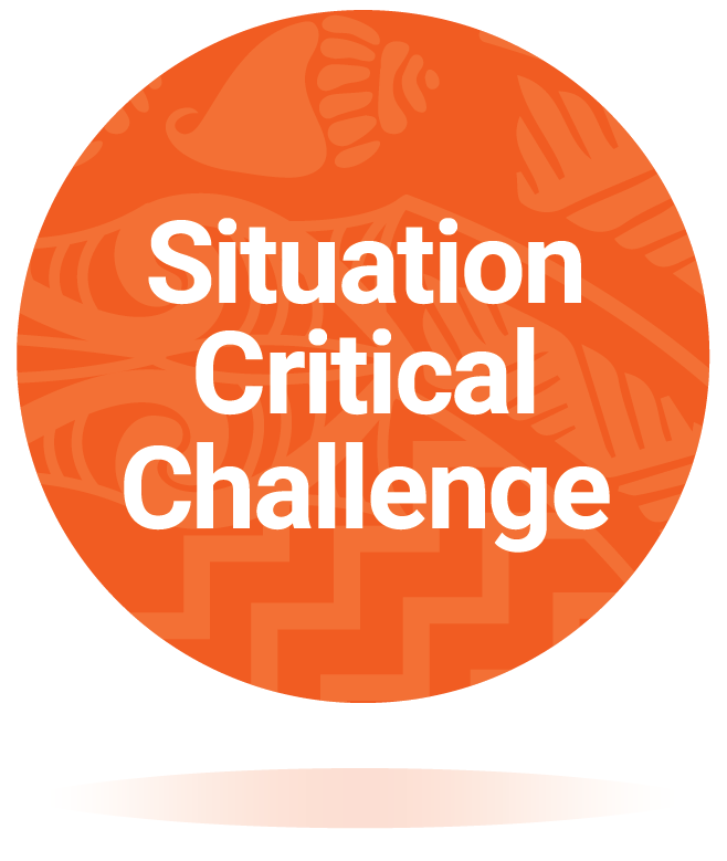 Situation Critical Challenge download