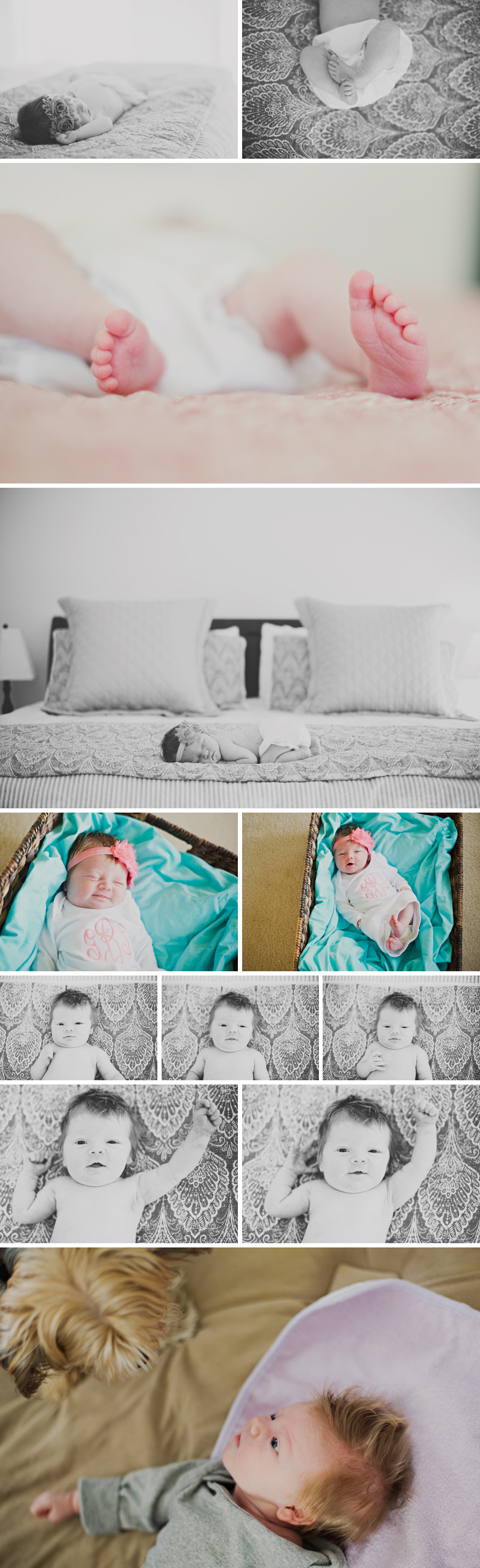 Delaware-Newborn-Photographerc002