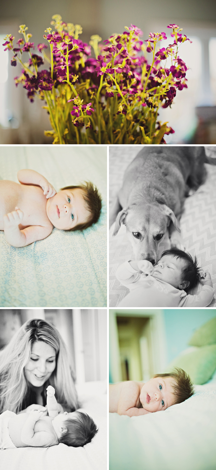 Dallas-Newborn-PhotographerG012