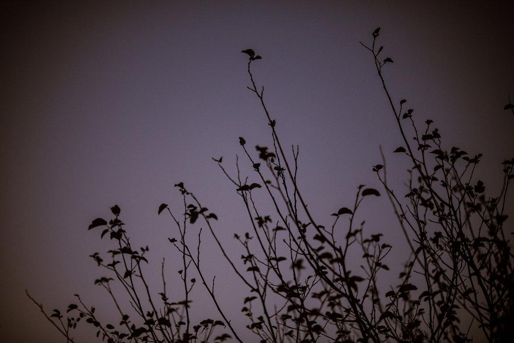 October 17: Dusk.