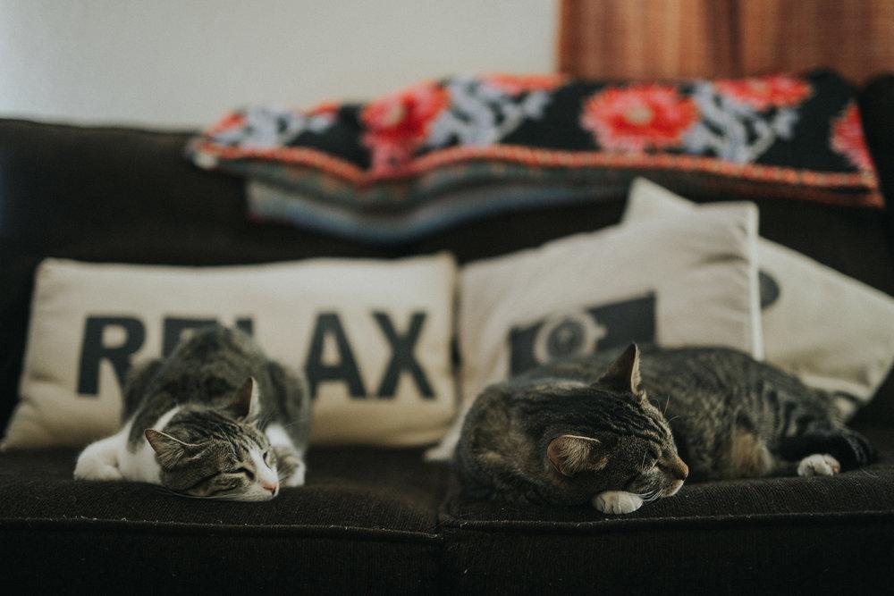 December 30: Relax.