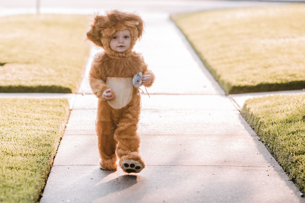 October 2: Jameson modeled his Halloween costume for me. I mean, months later I still cannot handle the cute.