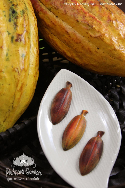 Signature Cocoa Pod (3).jpg